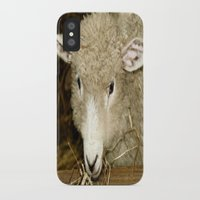lamb iPhone & iPod Cases featuring Lamb by Raymond Earley