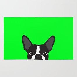 Boston Terrier Green Rug