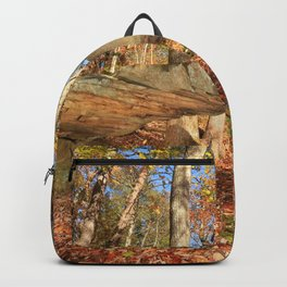 Photos USA Leaf Grundy County Tennessee Autumn Nature Forests Trees Foliage forest Backpack