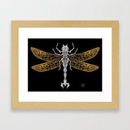 Royal Dragonfly Framed Art Print
