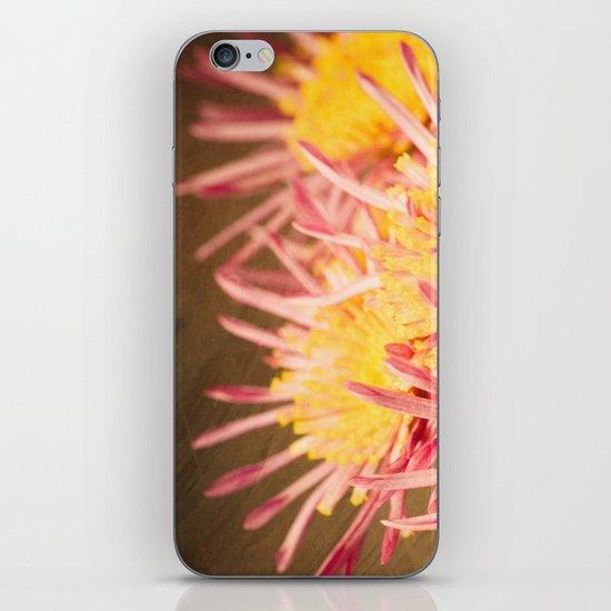 Autumn Fireworks iPhone & iPod Skin