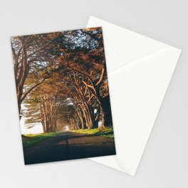 Sunrise at the Tree Tunnel - Point Reyes, California Stationery Cards