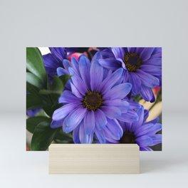 Purple Shaded Daisies Mini Art Print