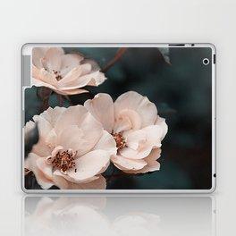 Pink velvet Laptop & iPad Skin