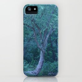 Fariy Tale Tree 2 iPhone Case
