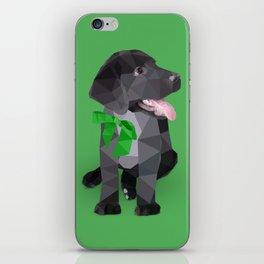 Low Polygon Black Labrador - Green Bow iPhone Skin