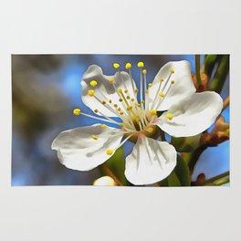 Plum Blossom Rug