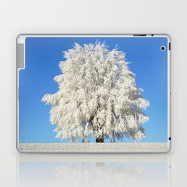 Frost Covered Tree Laptop & iPad Skin