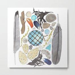 Coastal Treasures Metal Print