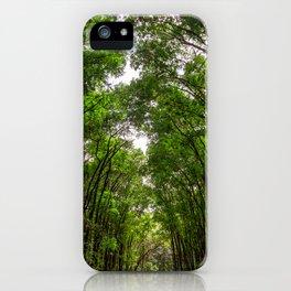 Canopies of Mahogany iPhone Case