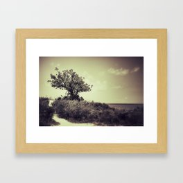 {paths} Framed Art Print