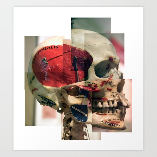 Anatomy Lesson Art Print