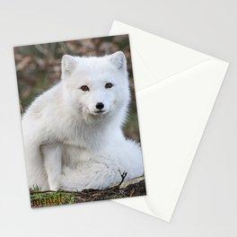 Polar Fox by Anne Elisabeth Stationery Cards