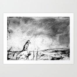 Dog on the rocks Art Print