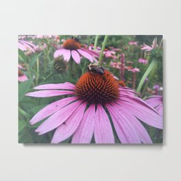 Flower and the Bee Metal Print