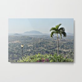 PALM'S LIGHT Metal Print