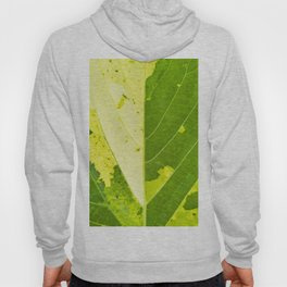 Leaf with abstract patterns 1 Hoody
