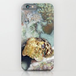 Baby Cuttlefish and Hard Coral iPhone Case