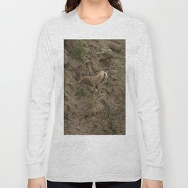 Baby Mountain Goat in Yellowstone National Park, WY Long Sleeve T-shirt