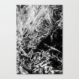 Ice III Canvas Print