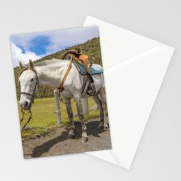 White Horse Tied Up at Cotopaxi National Park Ecuador Stationery Cards