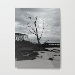 Blackrock Metal Print