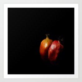 Autumn Pomegranate Art Print