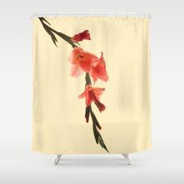 Serena Gladiolus Botanical Shower Curtain