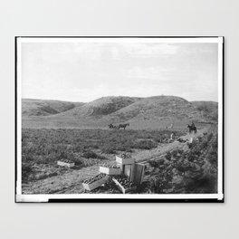 People Picking Tomatoes, Hammel & Denker Ranch Canvas Print