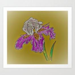 Dutch Iris-Gold Art Print