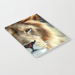 LION - Aslan Notebook