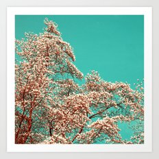 magnolia tree XV Art Print