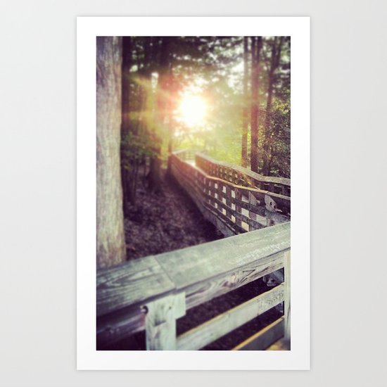 Sun in the Park Art Print