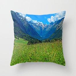 Bergwiese mit Talschluss Throw Pillow