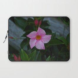 Pinky Laptop Sleeve