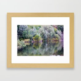 Nature's Reflections Framed Art Print