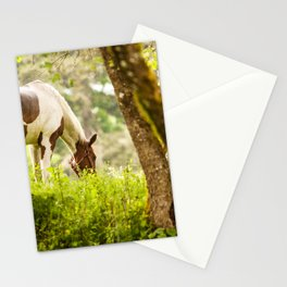 Horse Through the Trees Stationery Cards