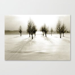 Wintertime in the Netherlands Canvas Print