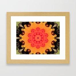Kaleidoskop Flower Framed Art Print
