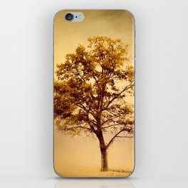 Amber Gold Cotton Field Tree iPhone Skin