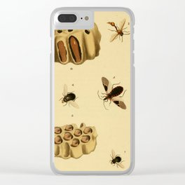 Bees Wasps And Honeycomb Clear iPhone Case