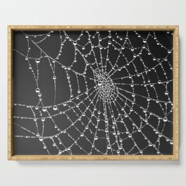 Spider web with dew water drops Serving Tray