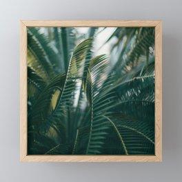 The Light Side Framed Mini Art Print