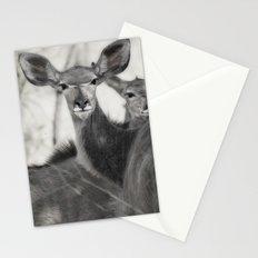 Kudu Stationery Cards