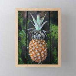 Weathered Pineapple Framed Mini Art Print