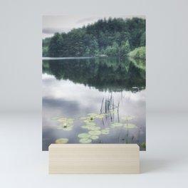 Lily pads Mini Art Print