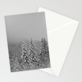 Snow2 Stationery Cards
