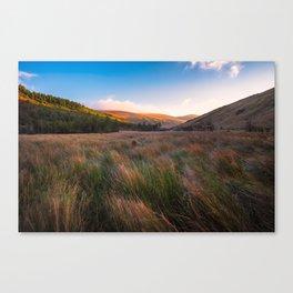 Orange Mountains - Ireland ( RR 258) Canvas Print