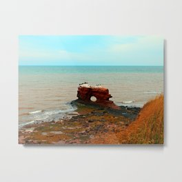 Holy Perch Metal Print
