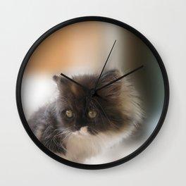 Nano Baby Kitten Wall Clock